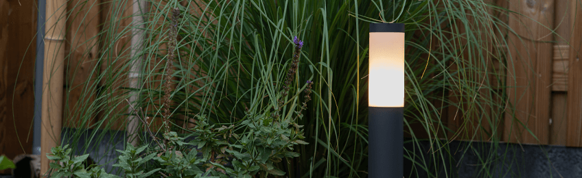 Trädgård belysning