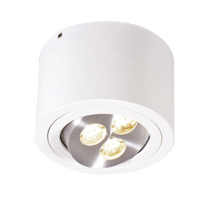 Plafond-strålkastare-'Keoni'-Moderna-vit/aluminium---LED-inkluderat-/-Inomhus