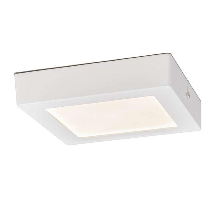 Plafond-och-vägglampa-'Plate-12W-S'-Moderna-vit/aluminium---LED-inkluderat-/-Inomhus