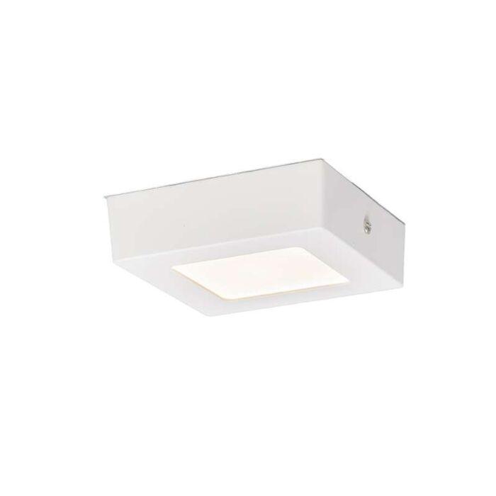 Plafond-och-vägglampa-'Plate-6W-S'-Moderna-vit/aluminium---LED-inkluderat-/-Inomhus