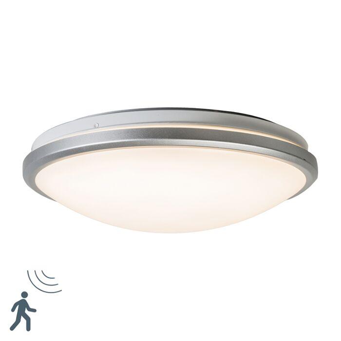Takljusgrå-inkl-LED-och-rörelsesdetektor---Captur